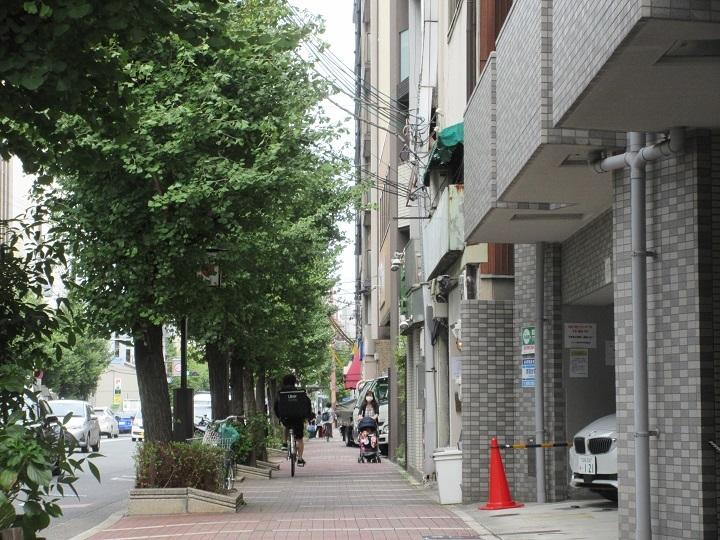 nishitomi-10.jpg