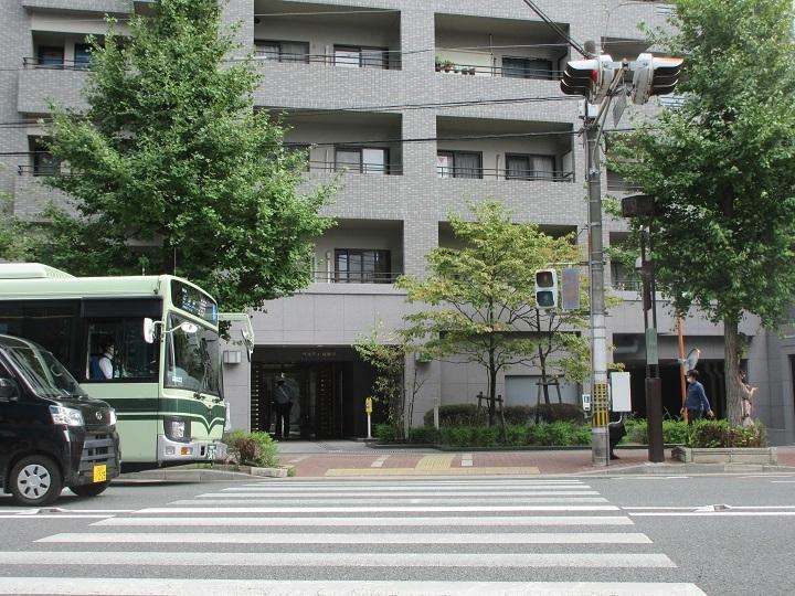 nishitomi-8.jpg