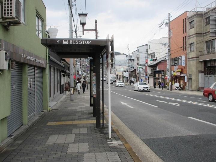 seika-2.jpg
