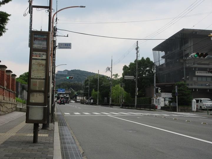tsuru-2.jpg