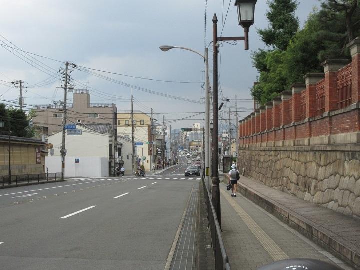 tsuru-3.jpg