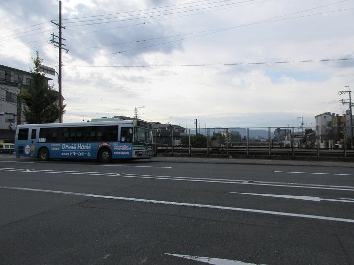 tsuruhonten-4.jpg