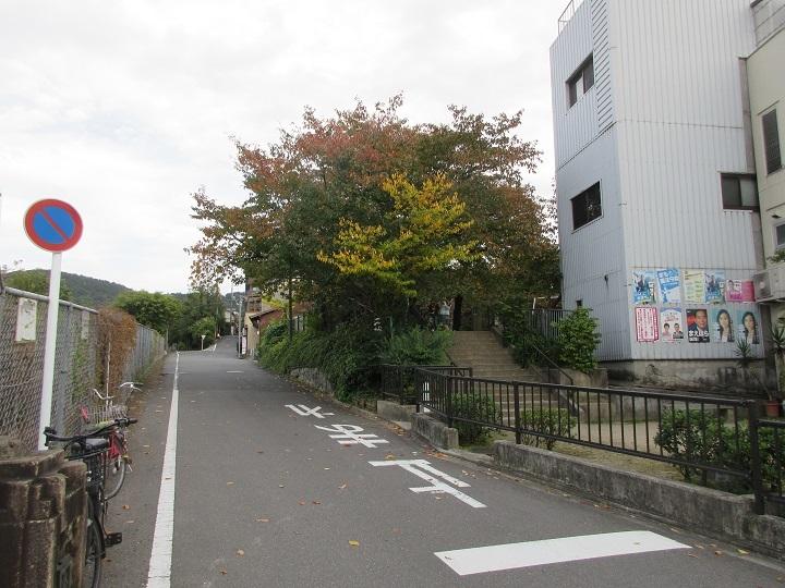 tsuruhonten-6.jpg
