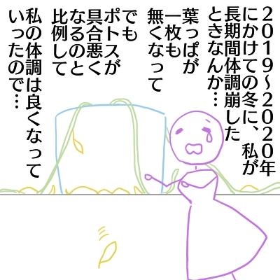 t11_20210201194338c74.jpg