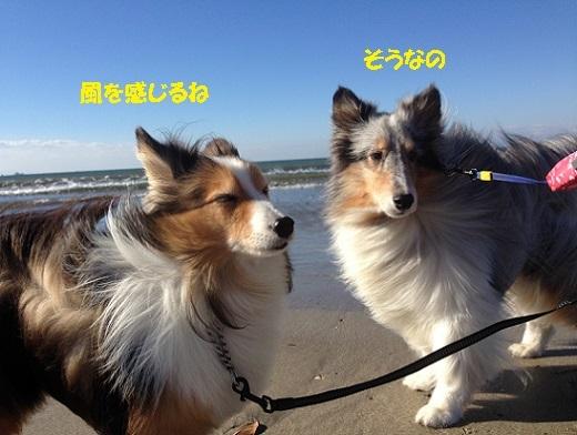 由比ガ浜4