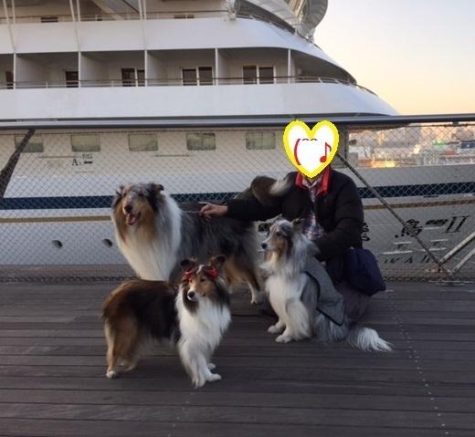 フロールちゃん横浜3