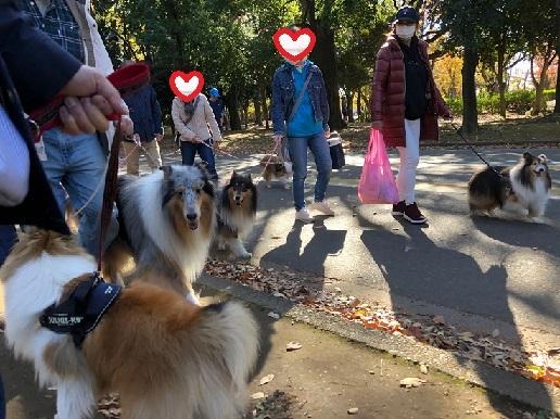 駒沢公園6