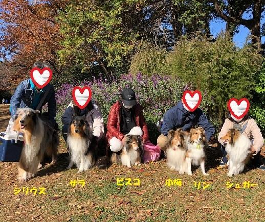 駒沢公園9