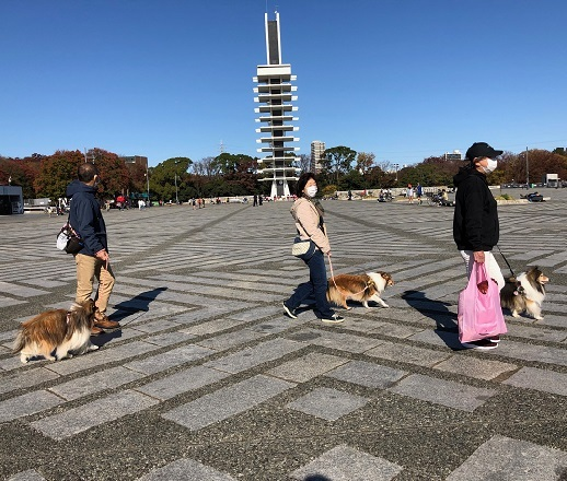 駒沢公園91