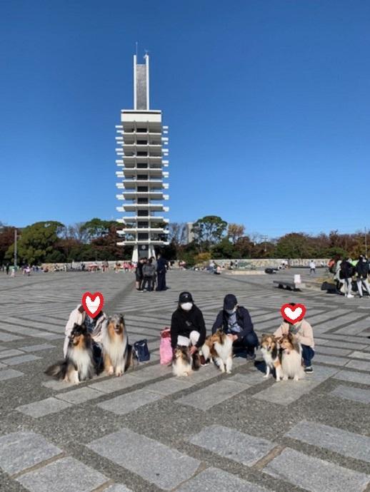 駒沢公園902