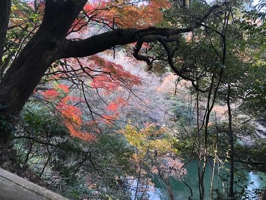 鎌倉湖90