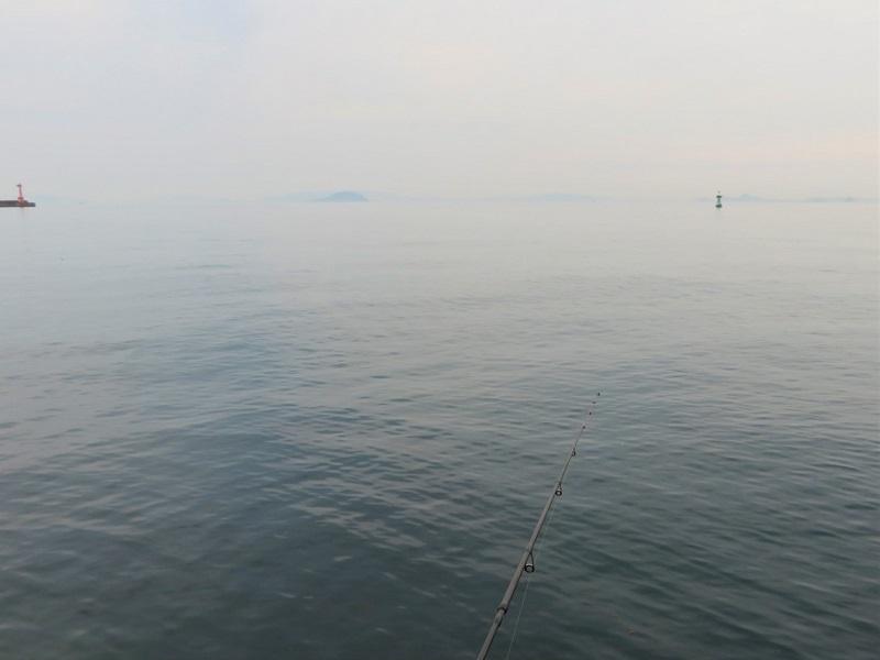 水無月釣り0206 (1)