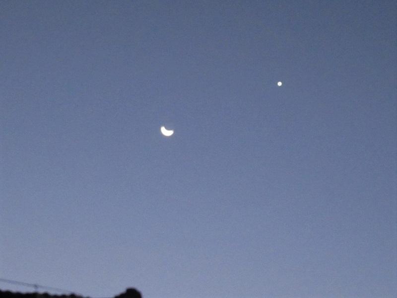 月と金星20208 (1)