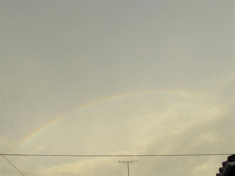 虹の朝0209 (1)