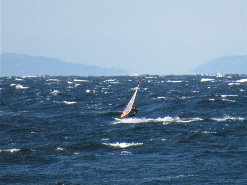 長浜0211 (5)