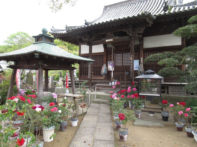 ボタン寺0304 (3)