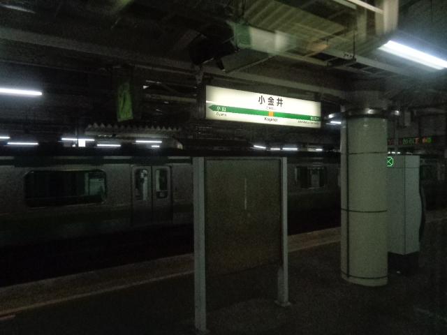 DSC00916.jpg