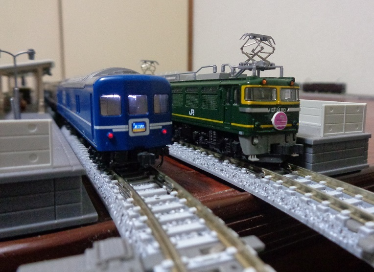 DSC09005.jpg