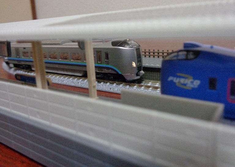 DSC09881.jpg