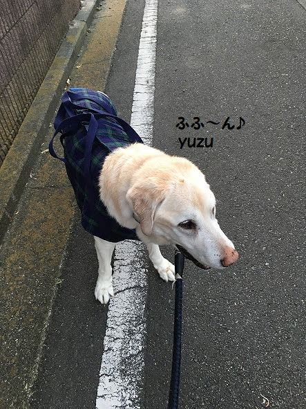 yuzu_20201228113223ade.jpg