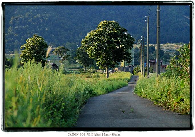 2009kfarm06.jpg