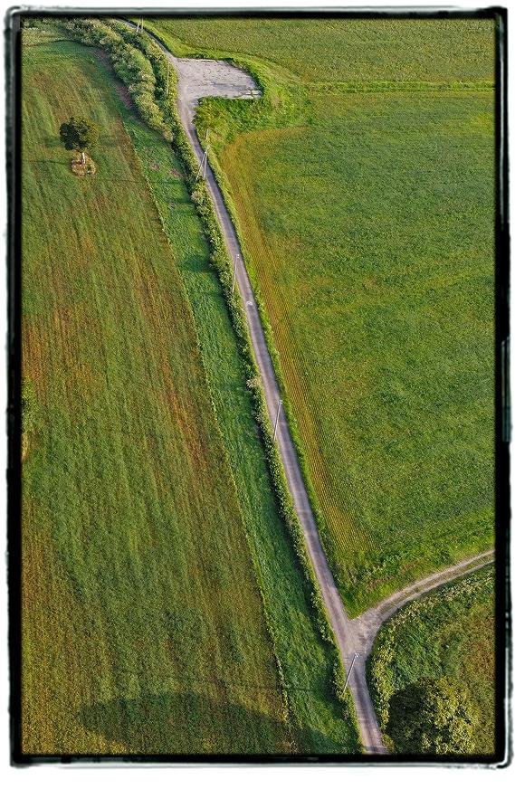 鳥甲牧場2009kfarmd0101.jpg