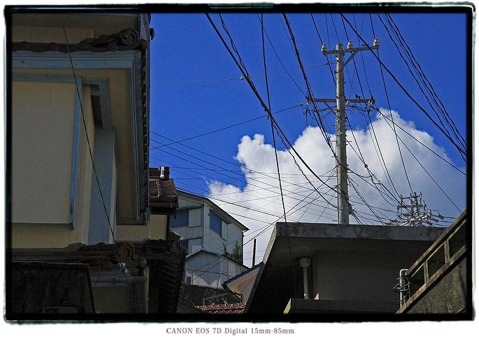 2010kamishima07.jpg