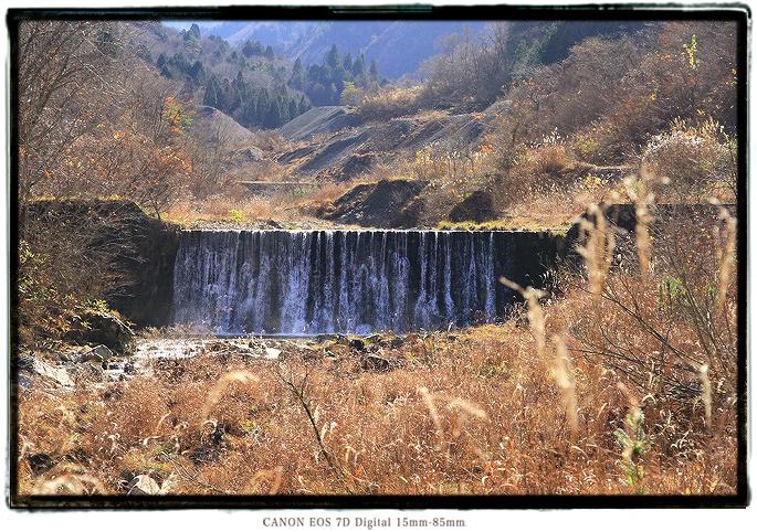 面谷林道2011omodani03.jpg