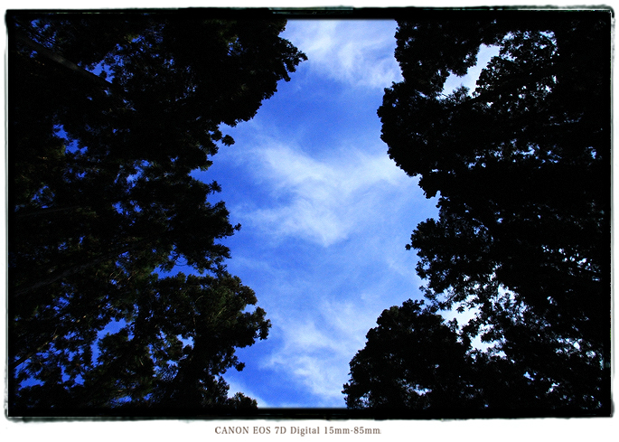 2012aichibunko07.jpg