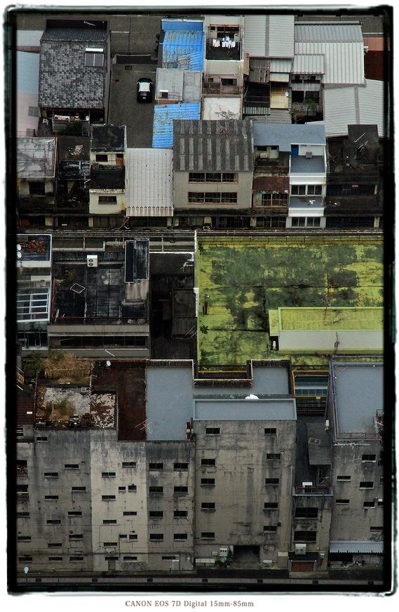 2012gifu012.jpg