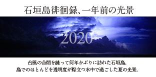 石垣島2013contentishigaki.jpg