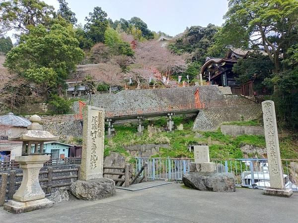 竹生島20210327 (16)