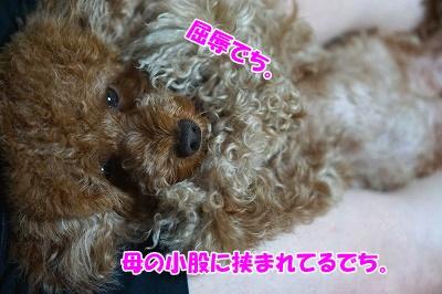 s-DSC06900.jpg