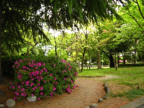 公園写真002