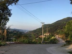 20040854.jpg