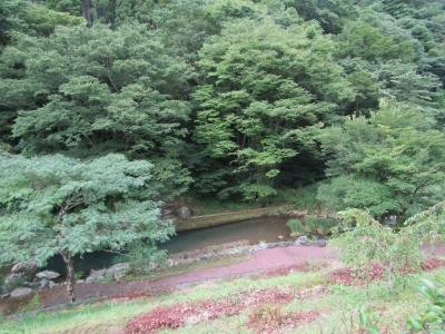 渓流の里7