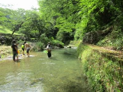 渓流の里5