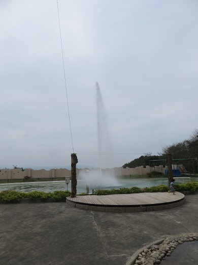 IMG_1052 (1)-1t