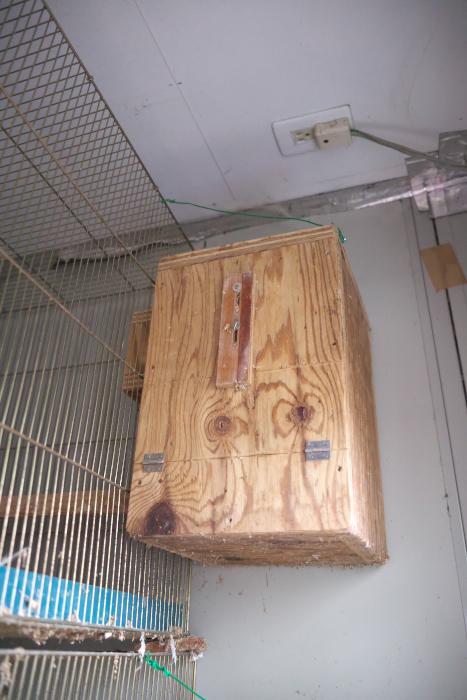 ウロコ巣箱210302