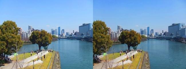 天神橋からの眺望(交差法)