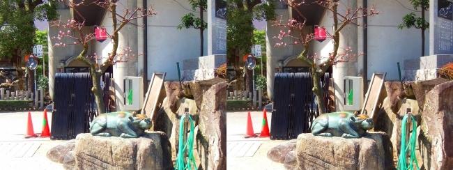 大阪天満宮 青銅牛と梅(交差法)