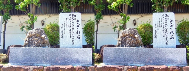 大阪天満宮 さざれ石(交差法)