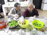 梅シロップ作り③