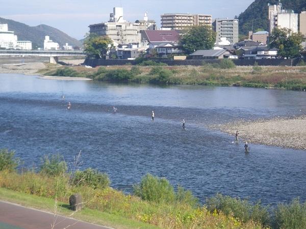 長良橋下流のガリ漁1