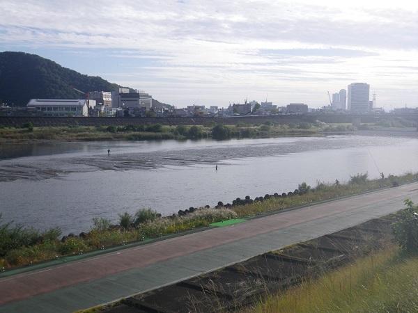 長良橋下流のガリ漁2