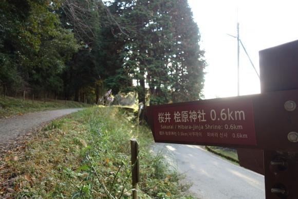 山之辺の道08-01