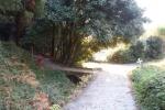 山之辺の道08-14