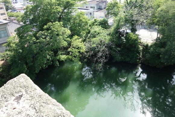 伊賀上野城10