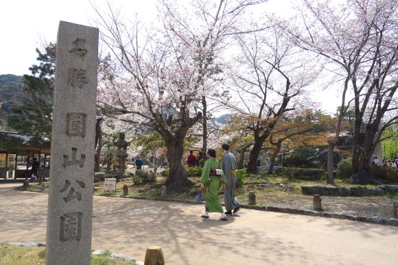 春の円山公園2021-01