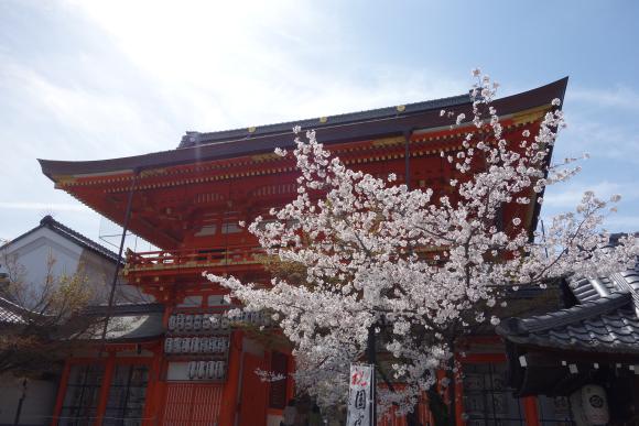 八坂神社・本殿18